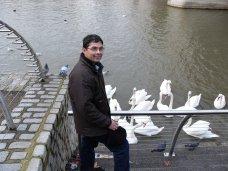 Warren at Kingston beside the River Thames